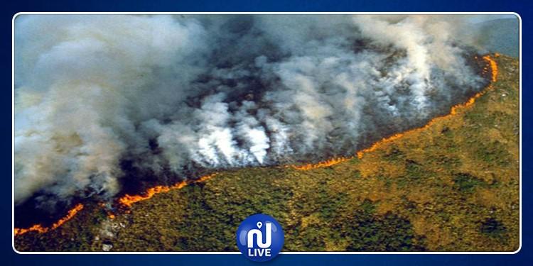 البرازيل: 'ماكرون عجز عن إطفاء حريق نوتردام ويريد مساعدتنا في إخماد حريق الأمازون'