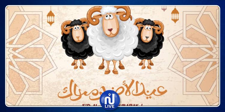 أسرة قناة نسمة تهنئ التونسيين بعيد الاضحى