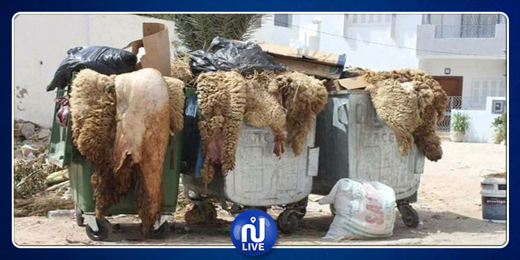 قربة :تراكم فضلات أضاحي العيد منذ أسبوع والأهالي يتذمرون