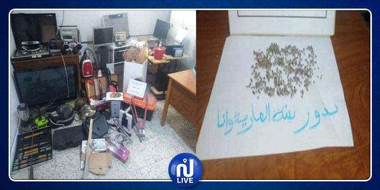 نابل: العثور على بذور ''ماريخوانا'' خلال التحقيق في جريمة سرقة