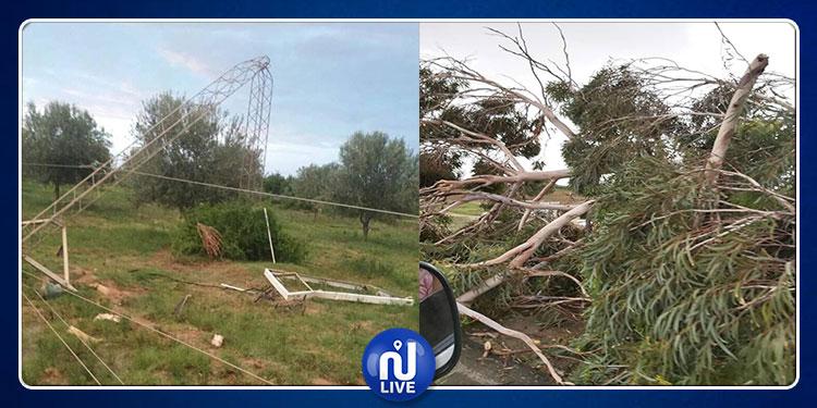القيروان: أضرار فلاحية جسيمة وسقوط أعمدة كهربائية جرّاء العاصفة