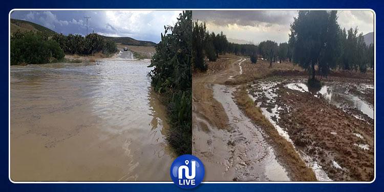 القيروان: أمطار غزيرة وغلق المسالك الفلاحية(صور+فيديو)