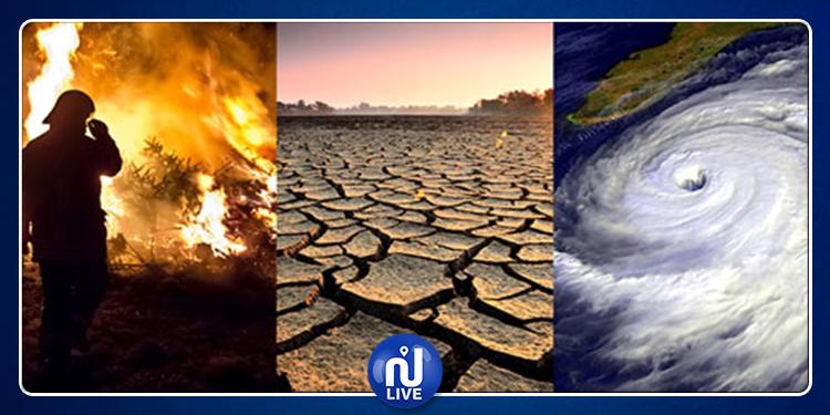 إطلاق برمجية معلوماتية لتقييم تأثيرات التغيرات المناخية في تونس
