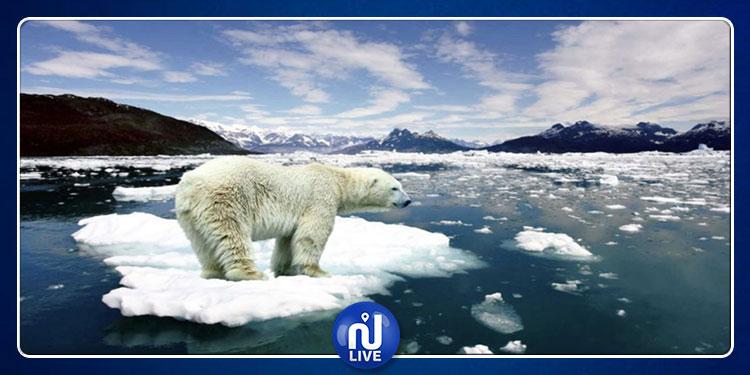 ذوبان الجليد بالقطب الشمالي ينذر بكارثة طبيعية تهدد كوكب الأرض