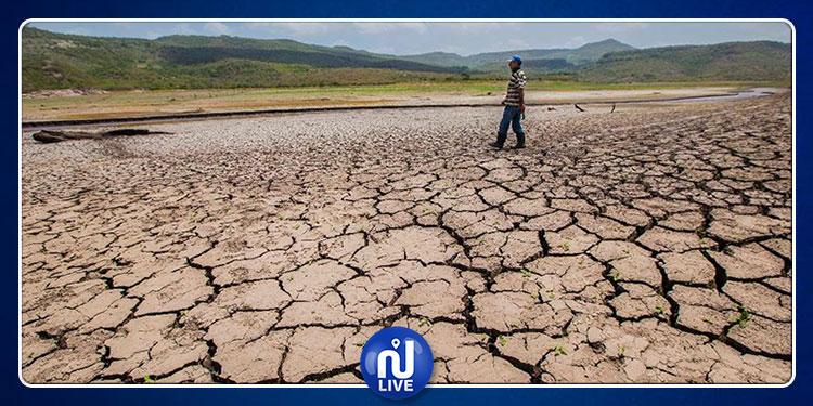 60 % من المهن مهددة جرّاء التغيرات المناخية