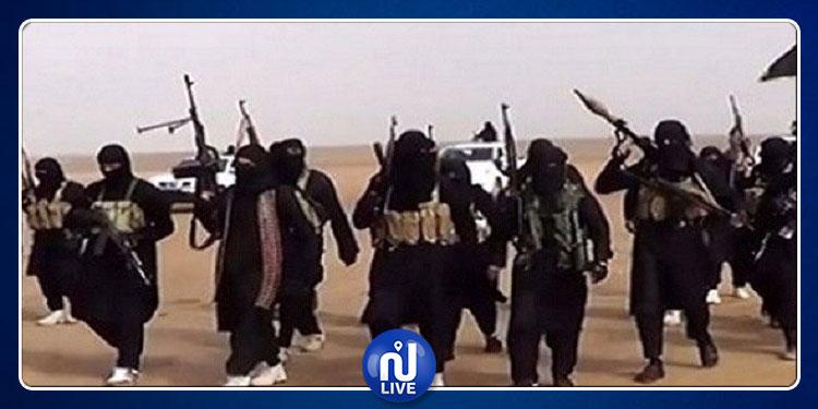 غدا.. تركيا ترحل إرهابيي داعش إلى بلدانهم