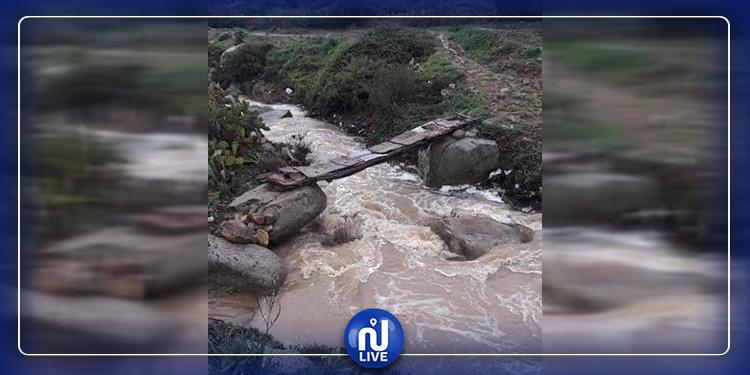 ''جسر معلق'' بجندوبة...متساكنو دوار أولاد سلامة يمرّون فوق الكارثة يوميا! (صور)