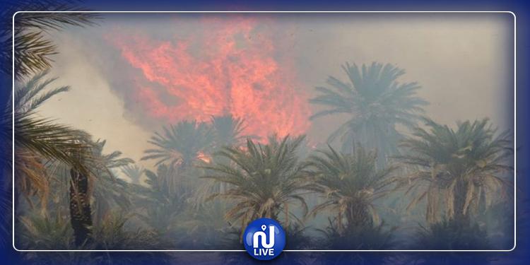 توزر: السيطرة على حريق نشب بالواحة القديمة
