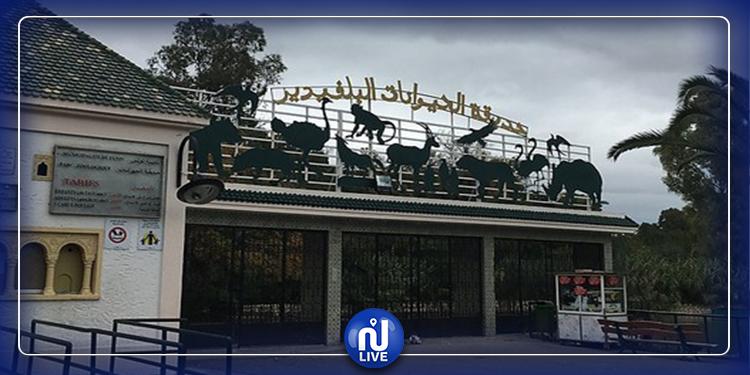 إقتحام حديقة البلفيدير وبلدية تونس تستنجد بالأمن