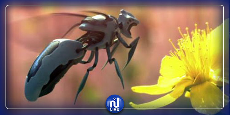 Des abeilles robotisées pour polliniser les cultures