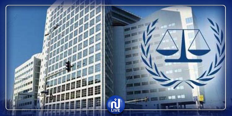 المحكمة الدولية الدائمة للتحكيم  : مشروع قانون تنقيح المجلة الجزائية  مخالف للدستور