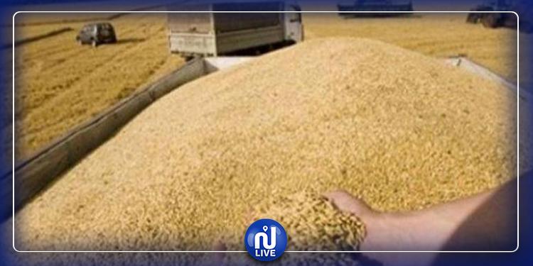 Céréales: Des stocks disponibles et un approvisionnement régulier en dépit du confinement