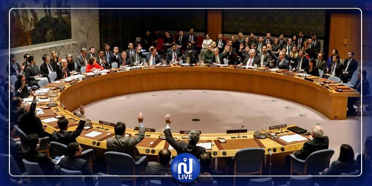 مشروع  قرار تونسي على طاولة مجلس الأمن الدولي