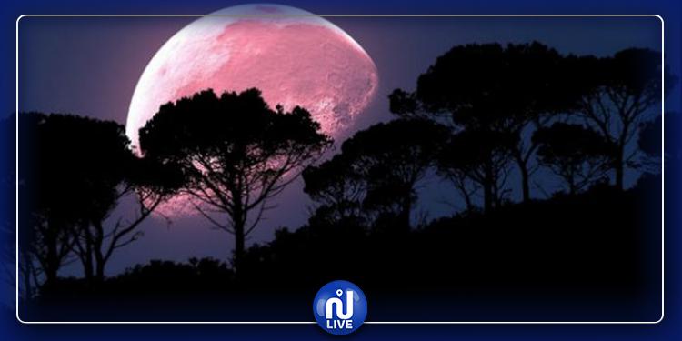 ترقبوا القمر الوردي العملاق الليلة