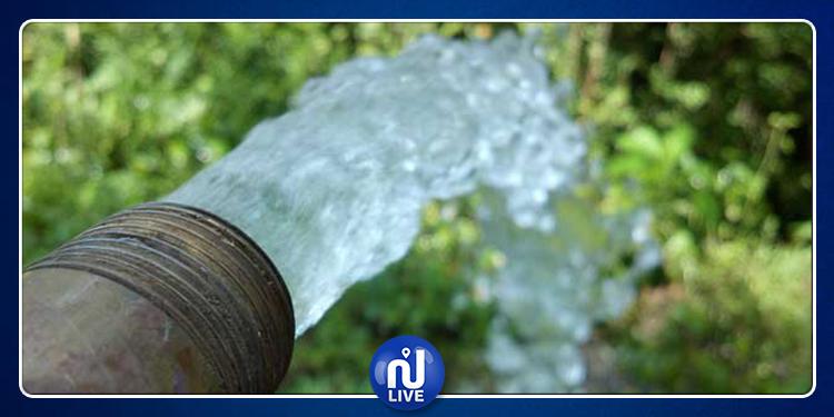 توزر: إجراءات لفائدة واحة توزر القديمة لتلافي نقص مياه الري خلال الصائفة