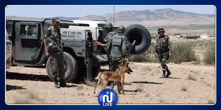 ضبط 12 شخصا بصدد اجتياز الحدود خلسة