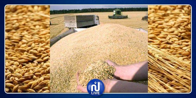 التمديد في آجال التمتع بمنحة التسليم السريع للشعير المحلي