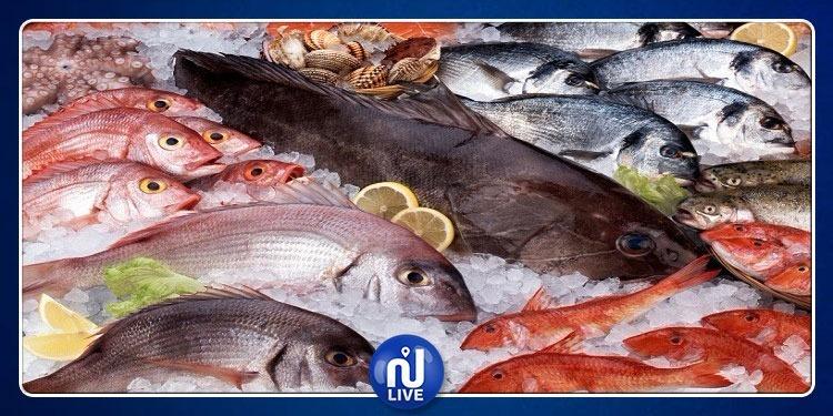 ارتفاع هام في صادرات منتجات الصيد البحري