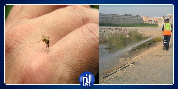 الكاف: حملة نظافة بحدائق المدينة في انتظار حملة ثانية لمقاومة 'الناموس'