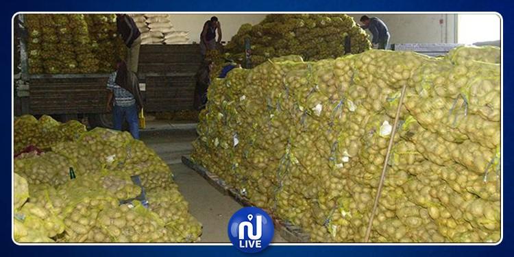 عمر الباهي: تم توريد البطاطا نظرا  للنقص الحاصل ولارتفاع أسعارها في السوق