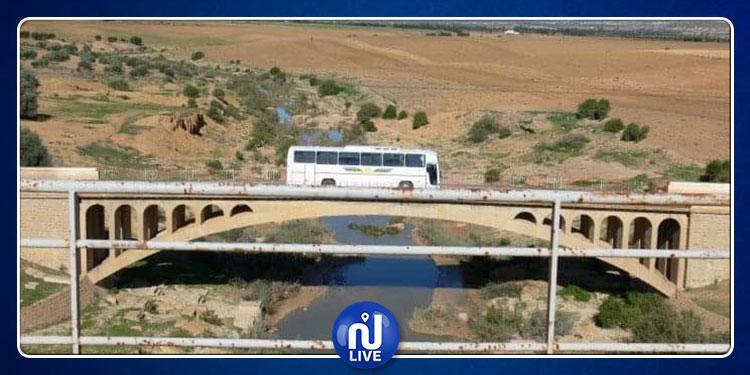 انطلاق بناء جسرين على وادي بوعرادة والمالح بولاية سليانة في سبتمبرالقادم
