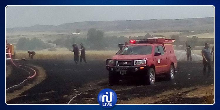 سليانة: حريق بأحد الأراضي الفلاحية