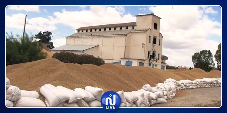 رفع 700 ألف قنطار من كميات الحبوب المجمعة في الهواء الطلق بسليانة