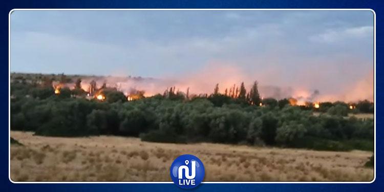 القيروان: إندلاع حريق هائل بمنطقة الذهايبية
