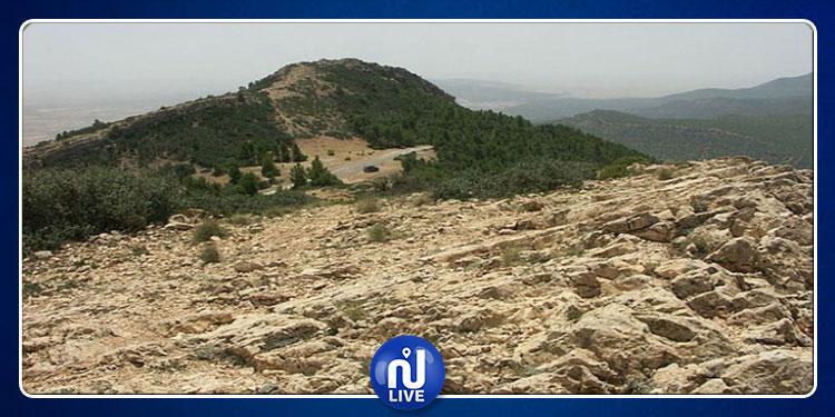 تلميذ يزوّد الإرهابيين بجبال الكاف بالمؤونة مقابل 200 دينار