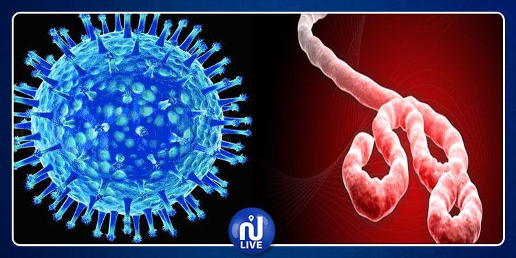 تسرب لفيروسات الجدري والإيبولا إثر انفجار بمختبر روسي