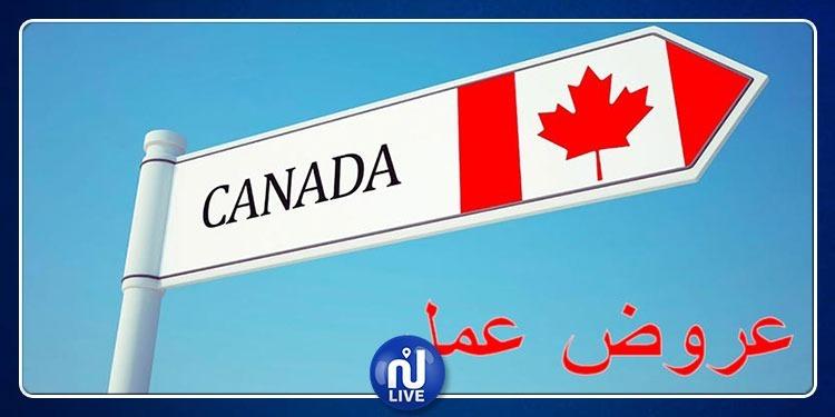 شركات كندية تنتدب عشرات التونسيين في هذه الاختصاصات