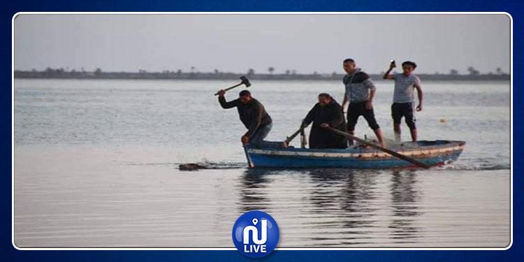 جربة: القضاء على خنزير برّي في عرض البحر! (صور)