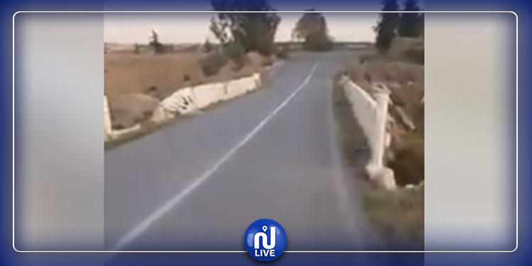 سليانة: أشغال توسعة بجسري الرميل ووادي الأحمر