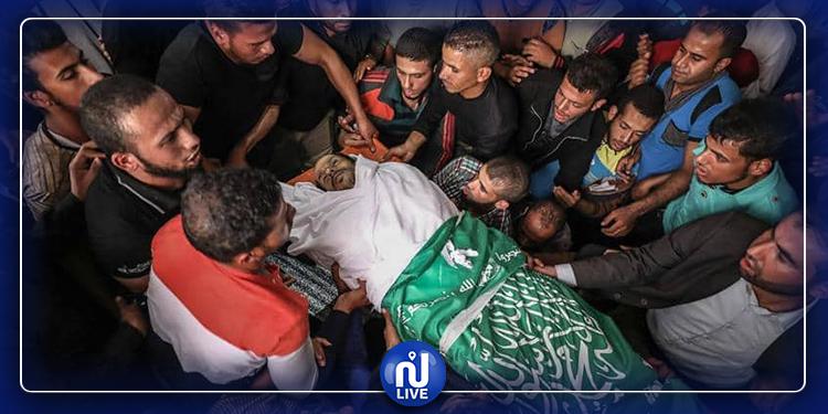 Palestinine : 149 martyrs palestiniens en 2019