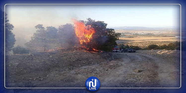 إخماد حريق بجبل ''نينو'' ببوقرنين