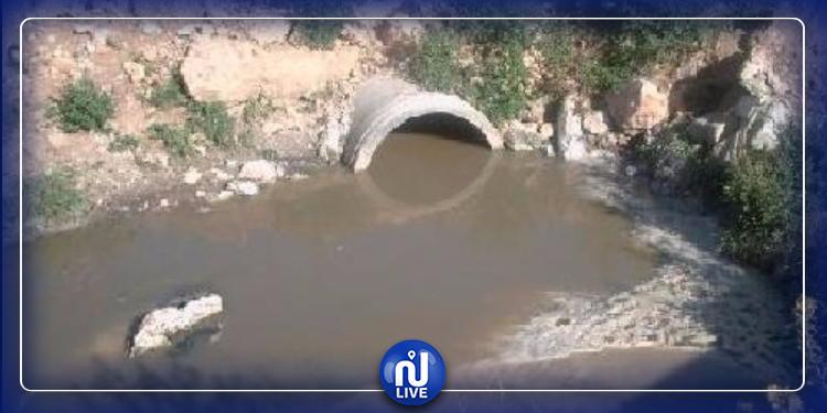 أريانة: مخاوف من كارثة بيئية بمنطقة رواد