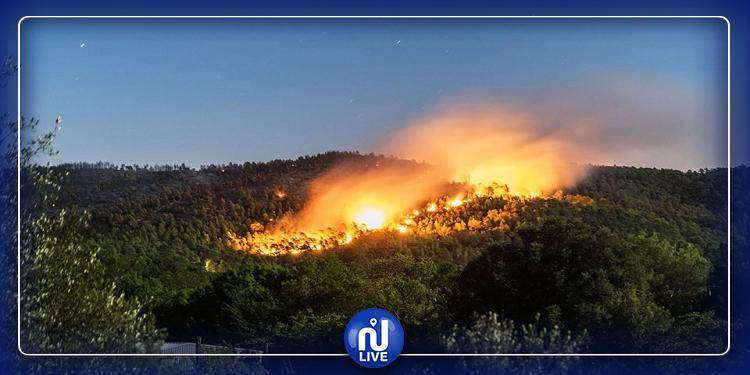 بنزرت: تجدد اندلاع النيران بجبل الناظور