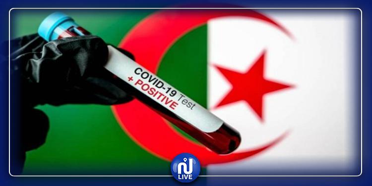الجزائر: 11 وفاة و538 إصابة جديدة بكورونا خلال 24 ساعة