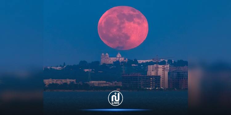 صور رائعة ''للقمر القندس'' خلف كاتدرائية القديس لويس بقرطاج