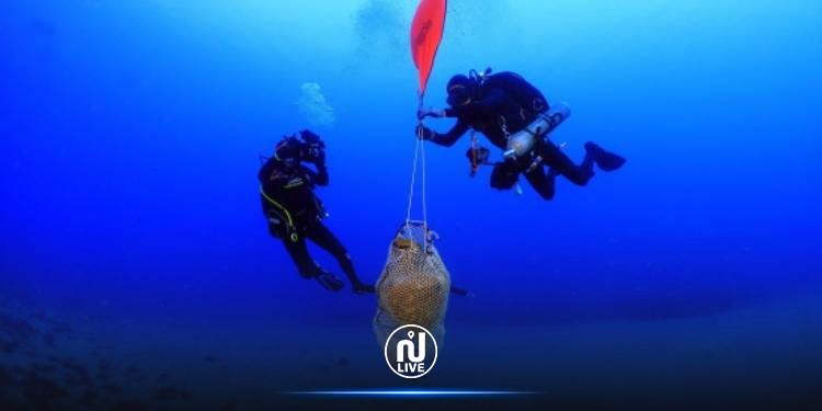اليونان: اكتشاف كنز أثري  يضم جرة تونسية تعود إلى القرن الثاني (صور)