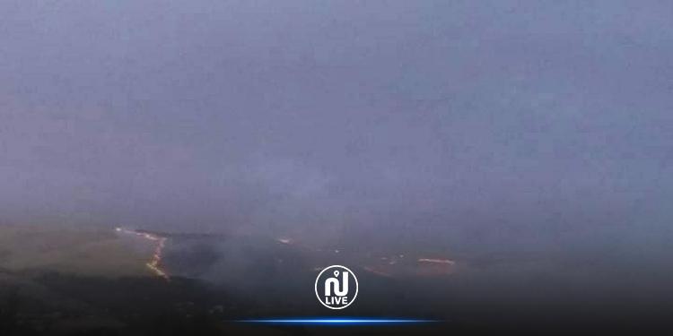 جندوبة: السيطرة على حريق بغابات بلطة بوعوان