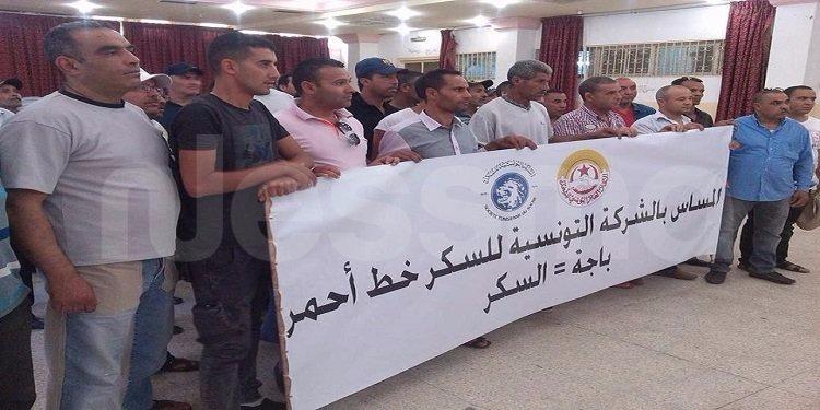 باجة : عدد من عمال الشركة التونسية للسكر في وقفة إحتجاجية