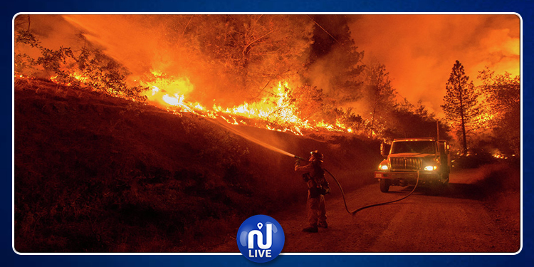 Israël ravagé par de violents incendies …