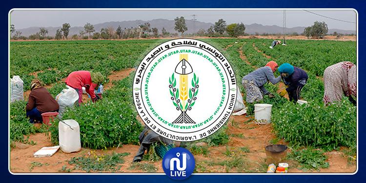 Mouvement de protestation des producteurs des pommes de terre