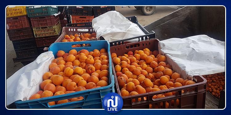 Kairouan : Une grande quantité d'abricots jetée à la poubelle