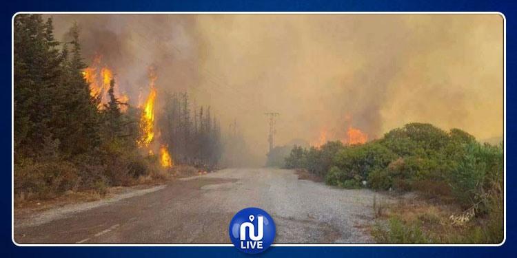 Les incendies au Mont Châambi maitrisés