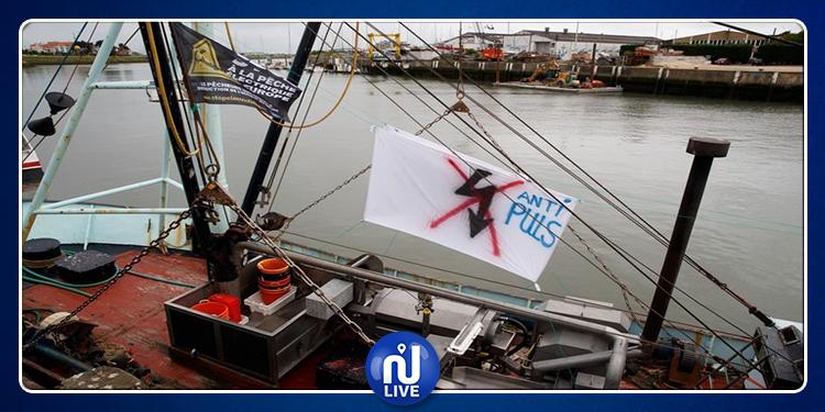 Interdiction de la pêche électrique dans les eaux françaises