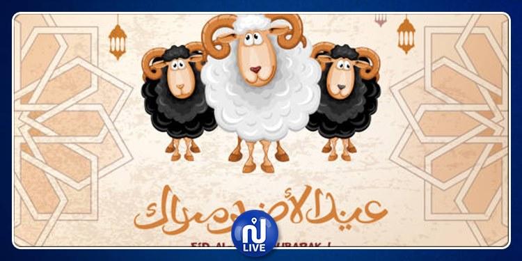 La chaîne Nessma présente ses meilleurs vœux aux Tunisiens