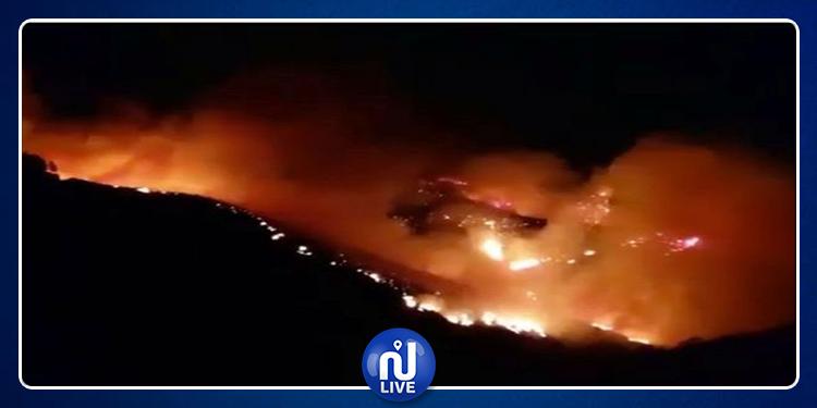 Espagne : l'île de Grande Canarie ravagée par un incendie