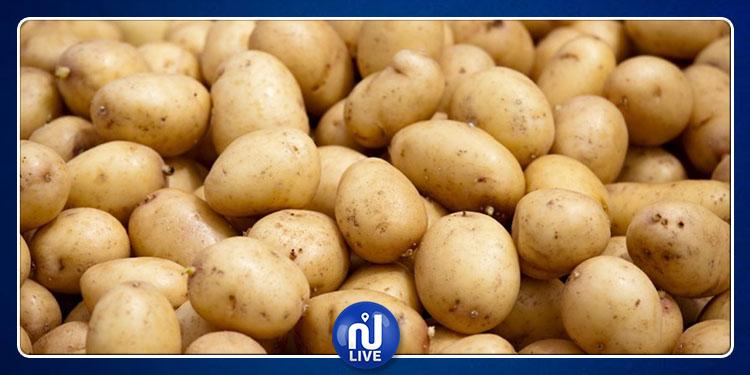 Saisie d'une grande quantité de pommes de terre…